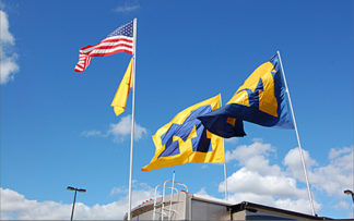 Tailgating Flagpoles